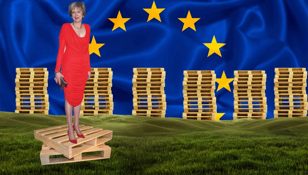 TMAY-ON-PALLETS